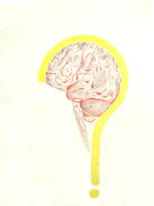 q_cervello